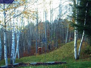 Vermont webcam