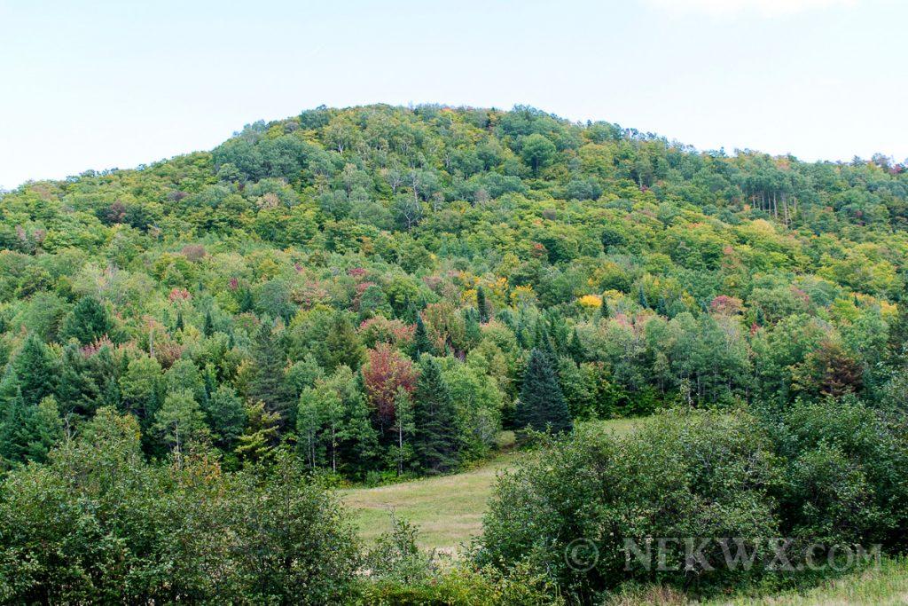 VT fall foliage 2016